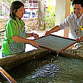Making Paper Using Mulberry Tree Pulp At Boring Paper Factory In Chiand Mai-thailand by Ruth Hager