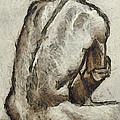 Male Torzo by Dragica  Micki Fortuna