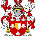 Mall Coat Of Arms Irish by Heraldry