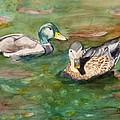 Mallard Ducks With Spawning Salmon by Charlotte Brux-Bolinger