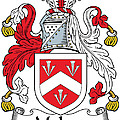 Malpas Coat Of Arms Irish by Heraldry