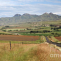 Maluti Mountains by Neil Overy