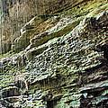 Mammoth Cave 2 by Kristin Elmquist