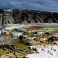 Mammoth Hot Springs by Robert Woodward