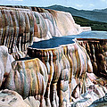 Mammoth Hot Springs Yellowstone Np by NPS Photo Frank J Haynes