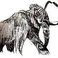 Mammoth by Kirsten Slaney