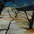 Mammoth Springs by Michael Kirk