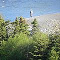 Man Fishing  by Juanita  Albert