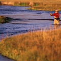 Man Fly Fishing On The Owens River by Corey Rich