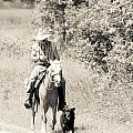 Man Horse And Dog by Cheryl Baxter