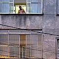 Man In The Window by Julie Niemela