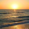Manasota Key Sunset by Todd L Thomas