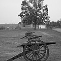 Manassas Battlefield Cannon And House by Christiane Schulze Art And Photography