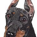 Manchester Terrier Vignette by Anita Putman