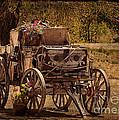 Mancos Flower Wagon by Janice Pariza