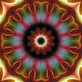 Mandala 101 by Terry Reynoldson