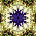 Mandala 114 by Terry Reynoldson