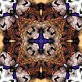 Mandala 17 by Terry Reynoldson