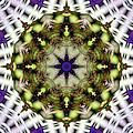 Mandala 21 by Terry Reynoldson