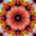 Mandala 91 by Terry Reynoldson