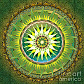 Mandala Green by Bedros Awak