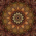Mandala Of Bones by Anthony Weinedel