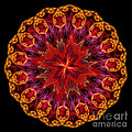 Mandala Of Love by Martin Capek