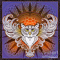 Mandala Owl by Julie Oakes