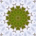 Mandala103 by Lee Santa