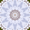 Mandala105 by Lee Santa