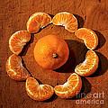 Mandarin by Kaye Menner