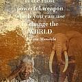 Mandela by Sharon Lisa Clarke