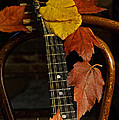 Mandolin Autumn 1 by Mick Anderson