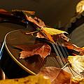 Mandolin Autumn 3 by Mick Anderson