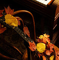Mandolin Autumn 5 by Mick Anderson