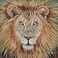 Mane Attraction by Jill Ciccone Pike