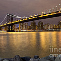 Manhattan Bridge Lights  by Leslie Leda