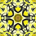 Manipura Separation by Derek Gedney