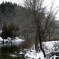 Manistee River by Linda Kerkau