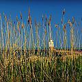 Manitowoc Breakwater Lighthouse Manitowoc Wi by Carol Toepke