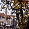 Manor by Margie Hurwich