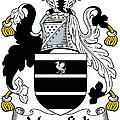 Mansfield Coat Of Arms Irish by Heraldry