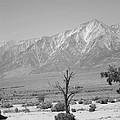 Manzanar-sierra Nevada Mountains II by Harold E McCray