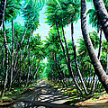 Manzanilla Coconut Estate by Karin  Dawn Kelshall- Best