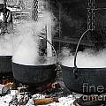 Maple Syrup Pioneer Style by Nina Silver