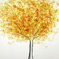 Maple Tree 1 by Syed Bilawal Kamal