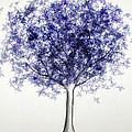 Maple Tree 3 by Syed Bilawal Kamal