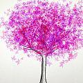 Maple Tree 4 by Syed Bilawal Kamal