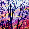 Maple Tree Sunset by Patricia Allingham Carlson