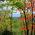Maples Against Lake Superior - Tettegouche State Park by Cascade Colors